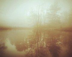 elizaville at etsy.com Golden Mist on Pond and Forest