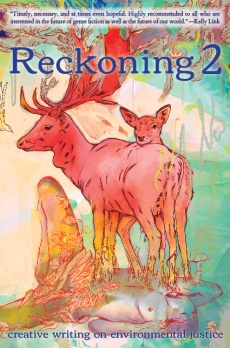 reckoning-2-cover